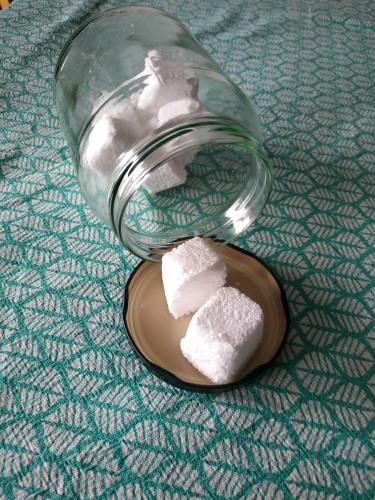 Pastilles lave vaisselle/WC2en1